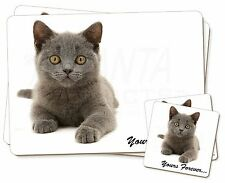 Silver Blue Cat 'Yours Forever' Twin 2x Placemats+2x Coasters Set in G, AC-133PC