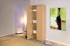 Büroschrank holz  Büro Aktenschränke aus Holz | eBay