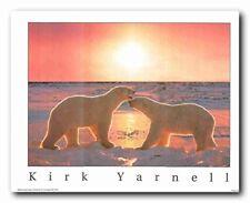 Cute Arctic Polar Bear Couple In Sunset Snow Animal Wall Decor Art Print (16x20)