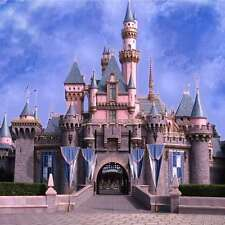 Beautiful castle 10'x10' CP Backdrop Computer printed Scenic Background zjz-827