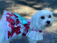 maltese dog dress