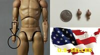 1/6 scale 2 x Hands Pegs Wrist Joints for hot toys ZC ZY COO male body USA
