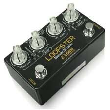 DSM Crécelle loopster Blender/Booster