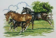 Cross Stitch Hanmdade Finished Completed Horses Pony Western