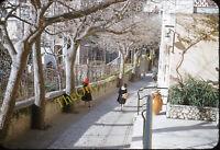 School Girls Street Scene Europe Trees 1950s 35mm Slide Red Border Kodachrome