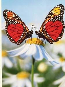 """I [Heart] You"" VALENTINE'S DAY CARD Avanti BUTTERFLIES & DAISY I Love You"