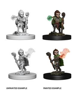 Pathfinder Deep Cuts Unpainted Miniatures: Gnome Male Druid