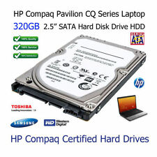 Hard disk interni HP SATA per 320GB