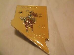 CR21) 1998 Nevada 4-N Rodeo Cowboy Bull Large Lions Club Pin
