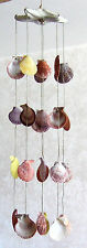 "NOBILIS SEA SHELLS HANGING FROM A WHITE STARFISH  17"" LONG BEACH WIND CHIME"