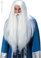 Perruque Blanche Barbe Sorcier MERLIN Déguisement Homme Costume Druide Médiéval