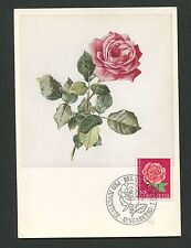 SCHWEIZ MK 1964 FLORA BLUMEN ROSE MAXIMUMKARTE CARTE MAXIMUM CARD MC CM d1964