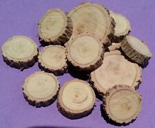 15 Sliced Tree Wood Pieces Fairy Garden Ornament Miniature Terrarium Craft