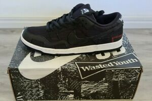 Nike SB Dunk Low Wasted Youth Size US 11.5 with Limited Edition Special Box
