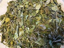 Moringa-Blätter - Nährstoffe pur - Futter für Garnelen, Krabben und Krebse & Co