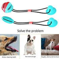 Pet Molar Bite Toy Multifunction Floor Suction Cup Dog Chew Tug Toy Ball Safe p2