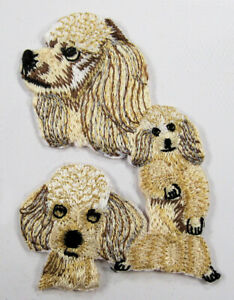 Yellow Poodle dog heat seal embroidered badge