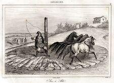 Sardegna: Trebbiatura del Grano con Cavalli Sardi. Acciaio. Stampa Antica. 1839