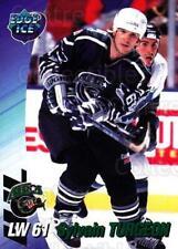 1995-96 Houston Aeros #21 Sylvain Turgeon