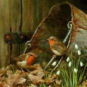5D Diamond Painting Robin Birds Full Drill Crafts Kits Embroidery Decor UK Stock