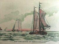 Vintage Postcard Off The Shores of Newfoundland Sail Boats  K7