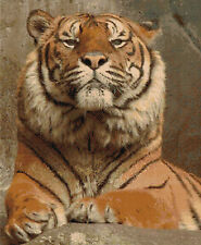 "Arrogance Tiger Counted Cross Stitch Kit Animals Big Cats 14ct 15""x18"" Free P&P"
