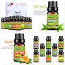 8Pcs/Set 10ml Pure Natural Therapeutic Aromatherapy Fragrance Essential Oils US