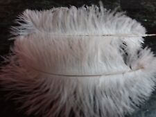 "One bleached white first grade drabs ostrich feather 270-320mm (11-13"")"