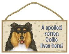 Collie A Spoiled Rotten Dog Sign wood Wall hanging Plaque Tri color puppy Usa