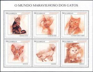 Mozambique 2002 Domestic Cats/Pets/Animals/Nature 6v m/s (b674a)