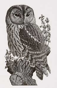 "'Wood Owl"" Original Wood Engraving c1937-39/2009 By Charles Tunnicliffe R.A."
