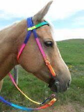 Nylon Headstall Browband Horse Rainbow Bridle Barrel Racing Trail Roping Reins