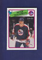Peter Taglianetti RC 1988-89 O-PEE-CHEE OPC Hockey #257 (NM+) Winnipeg Jets