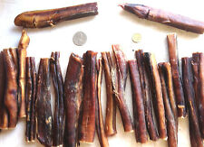 10 Large Bully Sticks/Pizzle Treat Chews. Alt 2 Pig Ear Chew 4 Pet Dog's Teeth