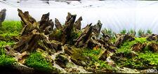20LBS Ohko Dragon Stone -- -- rock ADA aquarium fish plant shrimp Driftwood