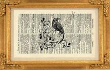 ORIGINAL-Raven on Skull Art Print on Vintage Dictionary Page 360B Wall Art