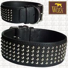 Premium Hundehalsband Vollleder WOZA Lederhalsband Rindleder Nappa Collar CA2845