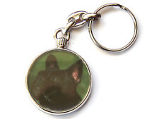 FRENCH BULL DOG Dog Puppy Quality Chrome Keyring Picture Both Sides