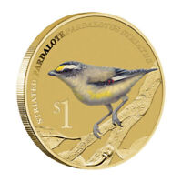 2013 Birds Striated Pardalote Tuvalu $1 Dollar Coloured UNC Coin Carded
