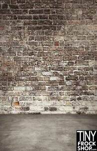 S-2966 Barbie Photography Backdrop - Standard - Alley Wall