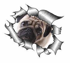 Metal RASGADO RASGADO Look Diseño Con Lindo Pug Perro Mascota de ojos tristes Pegatina de vinilo coche