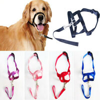 Dog Muzzle Head Collar Stops Dog Pulling Halter Training Leashes Pet Supplies