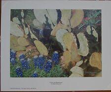 Texas Scene Fine Art Reproduction Open Edition Cactus & Bluebonnets Wildflowers