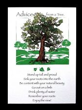 Happy Birthday Greeting Card Advice From a Tree Leanin Tree Earth Friendly