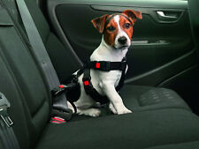 Hundegurt Sicherheitsgurt + Autogeschirr Sicherheitsgeschirr Hundegeschirr xS-xL