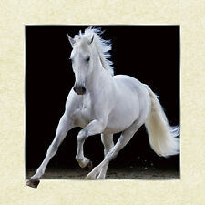 White Horse Lenticular 3D Picture Animal Poster Painting Home Wall Art Decor