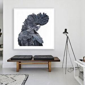 NEW Theo The Black Cockatoo Square Unframed Premium Wall Art Print | Bird Decor