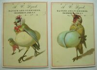Lot of 2 Victorian Trade Cards Anthropomorphic Birds Lynch Hatter Utica, NY B3