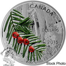 Canada 2015 $20 Forests of Canada: Columbian Yew Tree Silver Coin