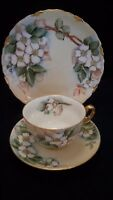 Antique 100+ yr-T&V Limoges/H&G Bavaria Cup Saucer Plate #5-Hand Painted-Signed
